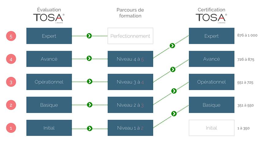 Tableau explicatif des parcours TOSA selon votre niveau d'initial à expert